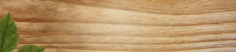 Image of wood grain and leaf